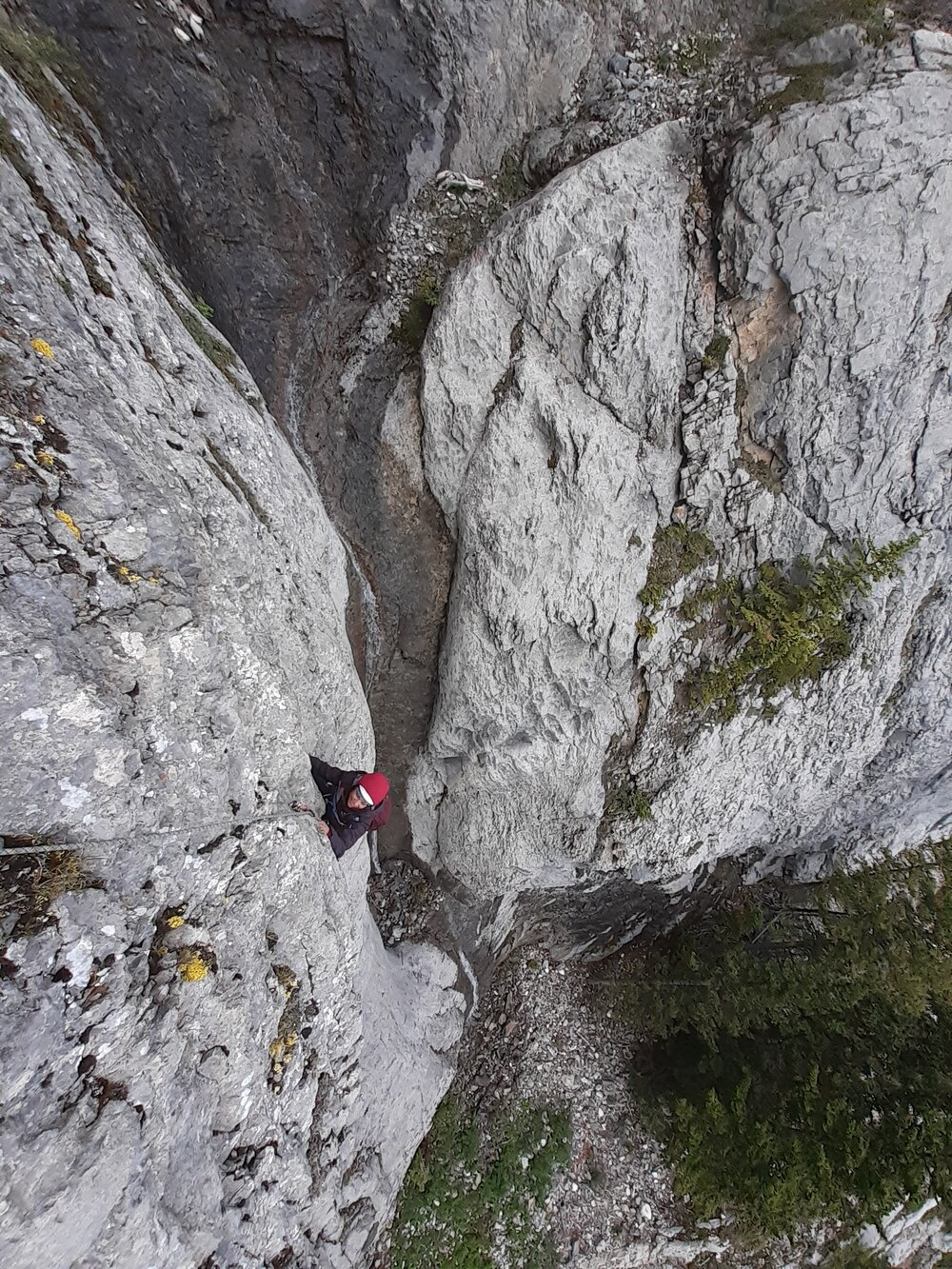 Janet Welch on Pitch 10 of Star Struck