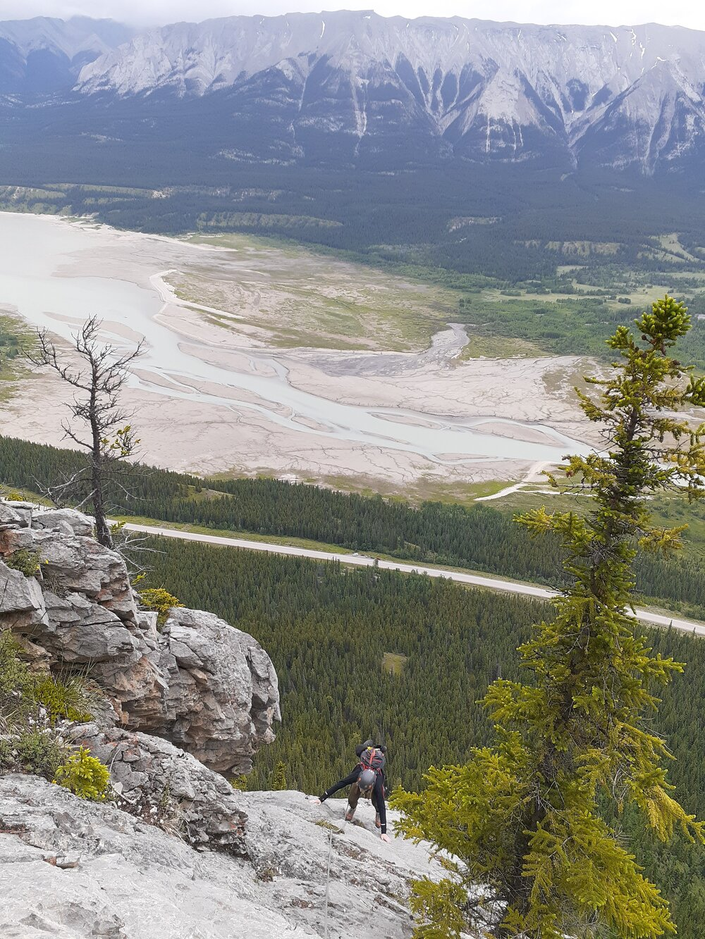 Looking down on Pitch 8